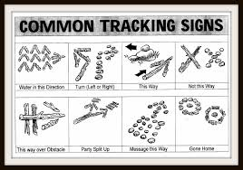 Common Tracking Signs - Scouts
